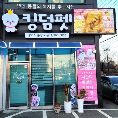 킹덤펫 [경기도 고양시]