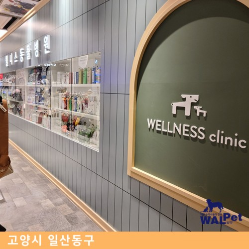 강아지·고양이 유선종양 제거 수술 [웰니스동물병원 고양점]