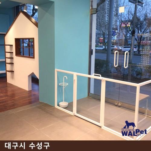 강아지·고양이 건강검진 [따뜻한ON동물병원]